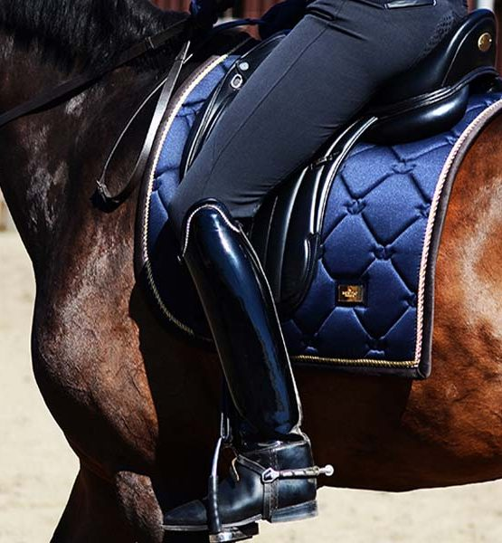Equestrian Stockholm dressyrschabrak