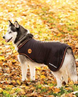 Rambo Ionic® Dog Rug