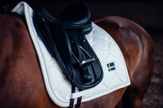 Equestrian Stockholm dressyrschabrak Sweden Nation