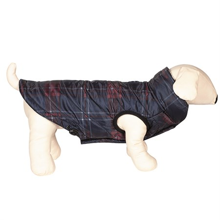 Hundtäcke Equiline Potty Dog's Bomber Jacket