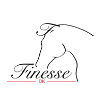 Finesse Bridles