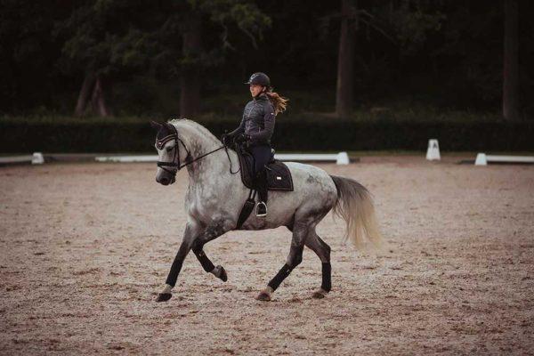 Dark Sky Equestrian Stockholm dressyrschabrak